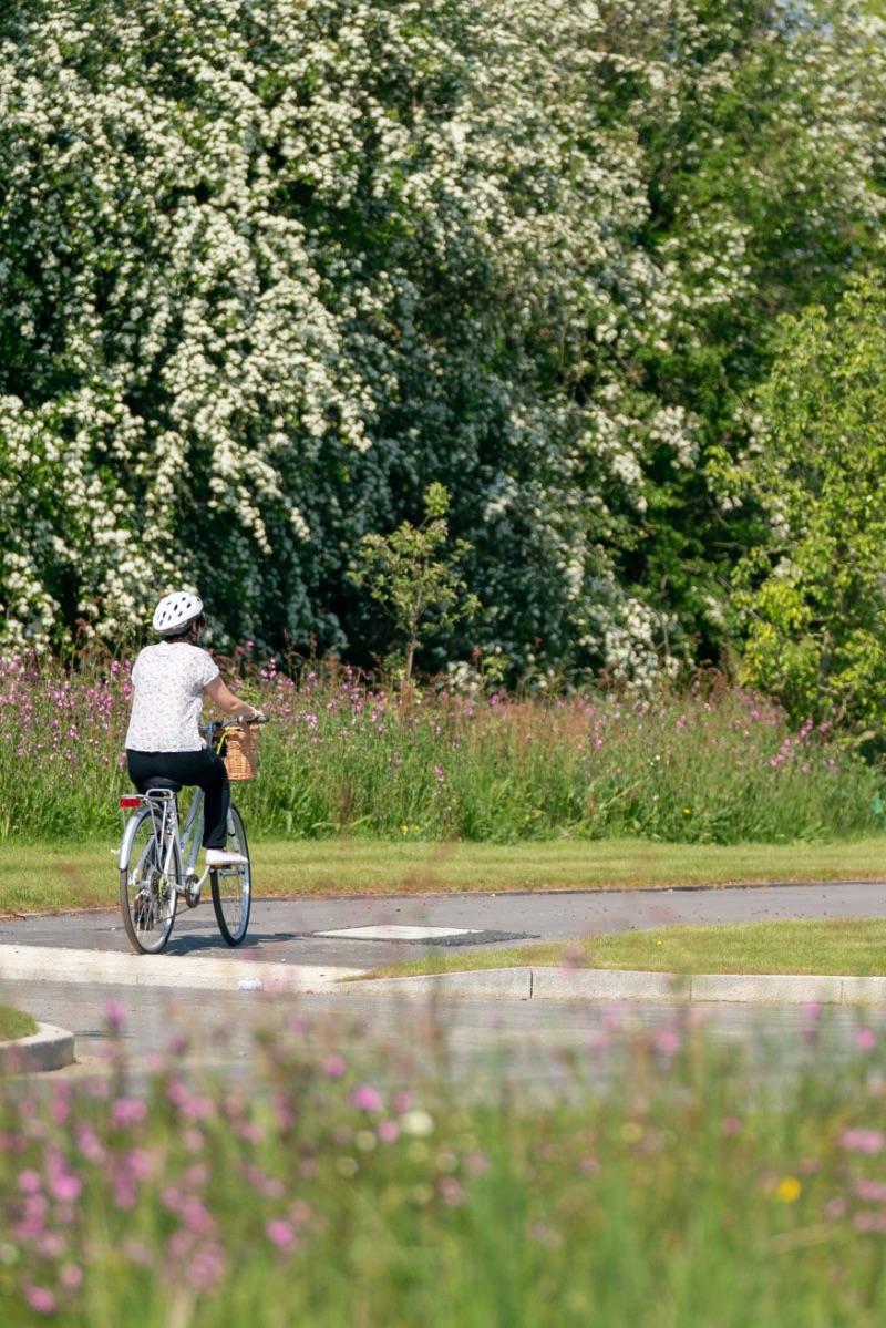 cycling through houlton